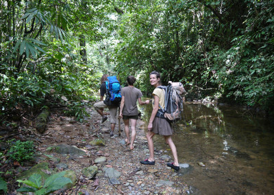 A jungle walk on the river